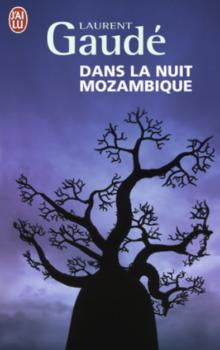 dans-la-nuit-mozambique-j'ai-lu